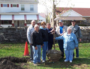 Summit Hill Shade Tree Commission